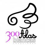 300 Alas Blancas